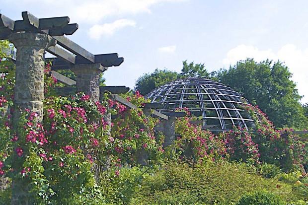 Foto: Förderverein Park Rosenhöhe