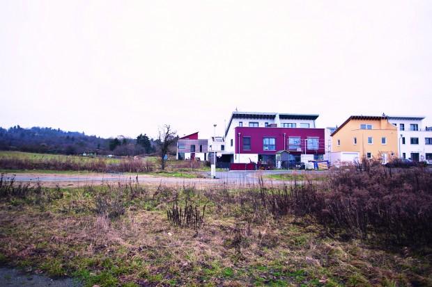Stadtplanerische Langeweile mitten in der Natur: 200qm schlüsselfertiges Glück am Rand der Streuobstwiesen in Eberstadt Foto: Jan Ehlers