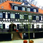 Das Hofgut und die Burgruine Rodenstein