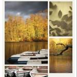 Herbstliche Impressionen vom Steinbrücker Teich