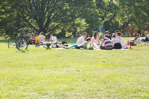 parks plaetze 0B7229