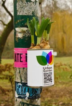 Foto: Urban Garden Darmstadt