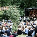 Golden Leaves Festival 2016: erste Bands!