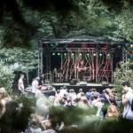 """Golden Leaves Festival: """"Da steckt Herzblut drin"""""""
