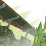 Über die grünste Kreuzung Darmstadts
