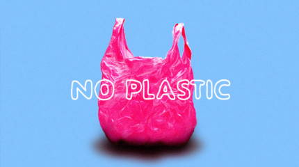 No Plastic Weekend
