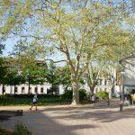 Alles auf Grün – Stadtnatur in Darmstadt