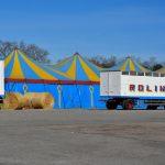 Zirkus ohne Manege
